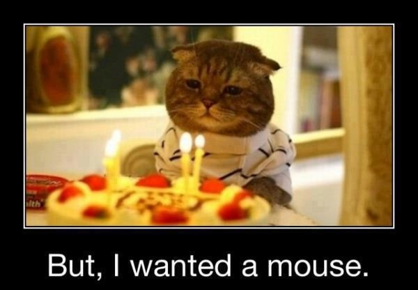 Funny Birthday Pictures 20