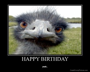 Funny Happy Birthday Pictures 191 300×240