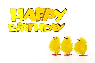 Funny Happy Birthday Wishes For Best Friend 5