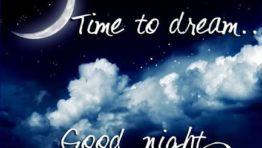 Good Night 1