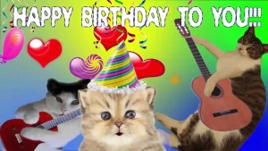 Happy Birthday Cute Cat 6 300×169