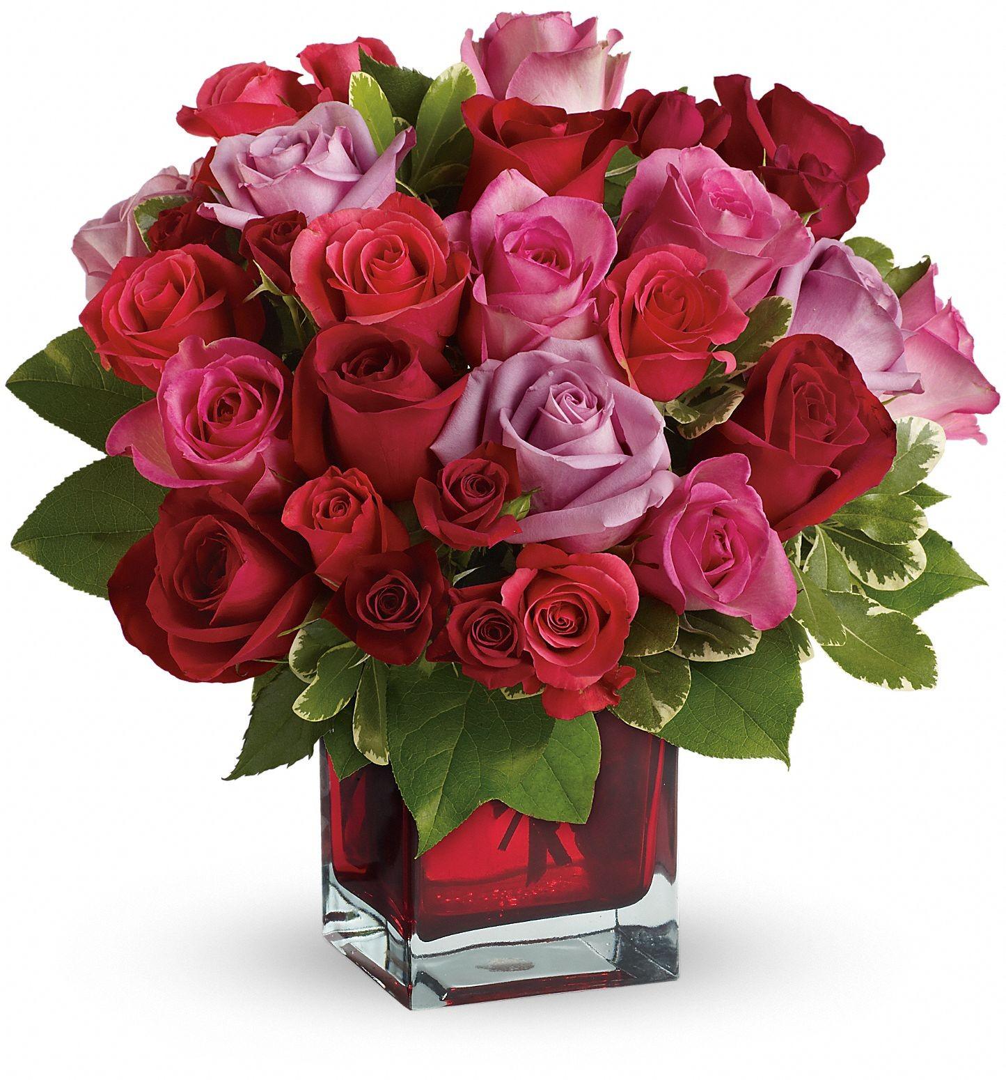 top roses flowers happy - photo #4