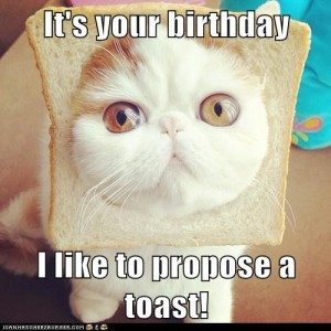 Happy Birthday Funny Cat 2 300×300