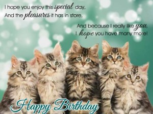 Happy Birthday Kitten 2 300×224
