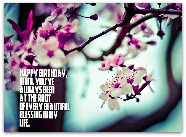 Happy Birthday Mama 12