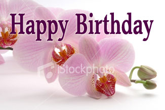 Happy Birthday Orchid Flower Images 4
