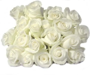 Happy Birthday White Roses Images 13 300×250