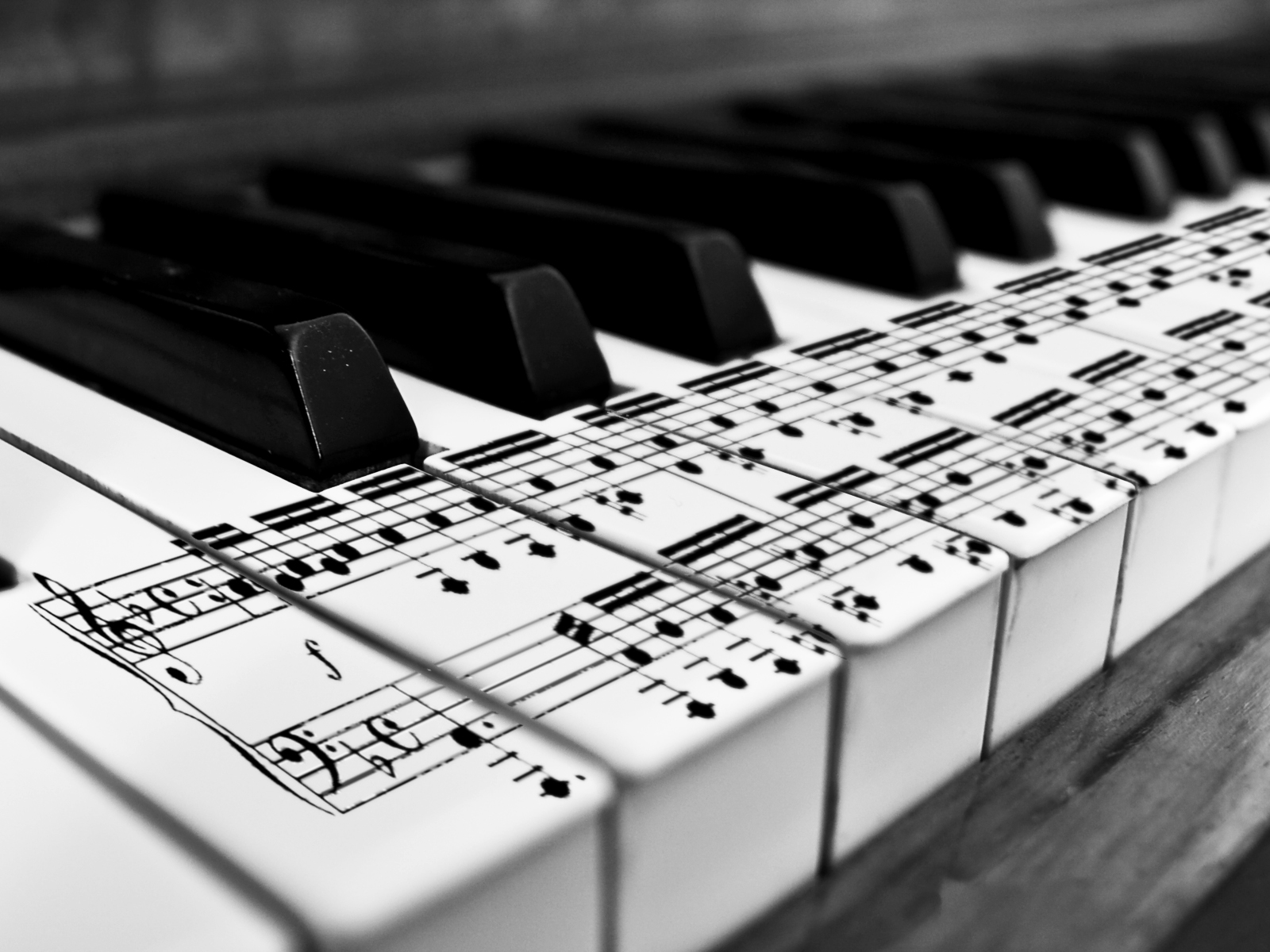 Piano Music Notes Wallpaper   HD Desktop Wallpapers for Widescreen