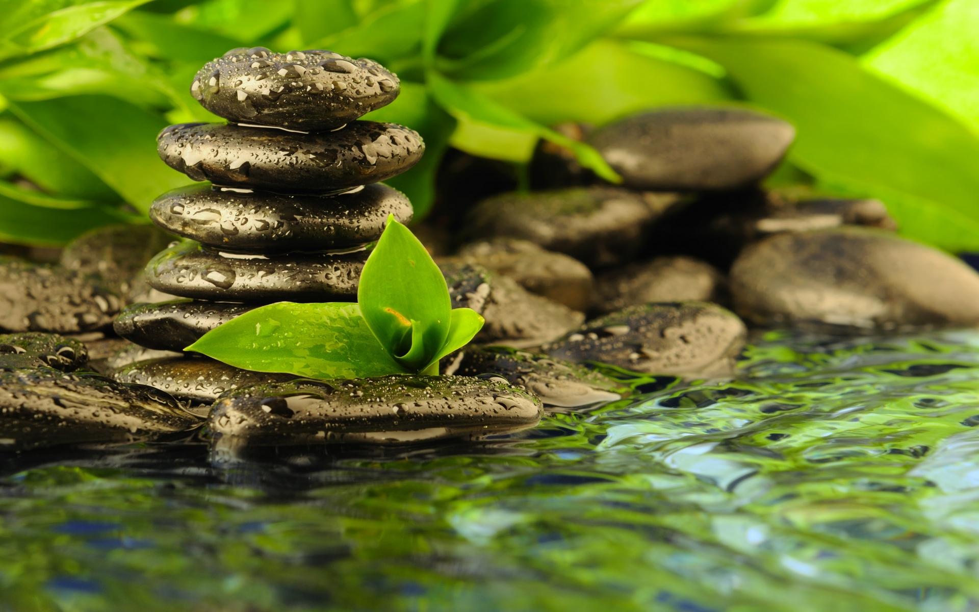 Zen Water Wallpapers | The Art Mad Wallpapers