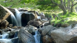 Peaceful Water Scenes 5