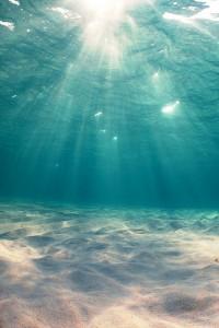 Underwater Ocean Tumblr 2 200×300