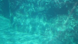 Underwater Tumblr Background 4
