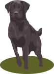 Black Lab Clip Art For Halloween1 110×150