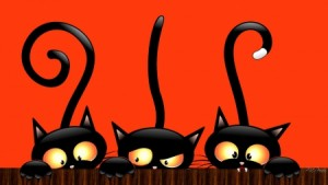 Cute Cat Halloween Backgrounds1 300×169