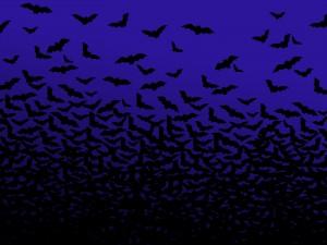 Halloween Bat Wallpaper4 300×225