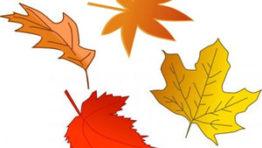 Halloween Clip Art Fall Leaves