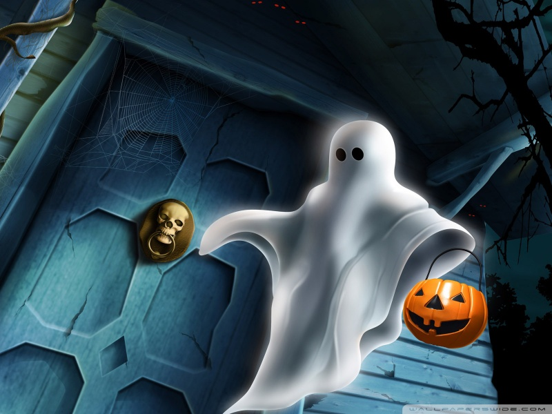 Halloween Wallpaper 800 X 6003