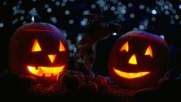 Halloween Wallpaper For Widescreen Desktop