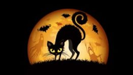 Halloween Wallpaper Hd 300×169