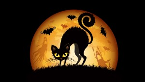 Halloween Wallpaper Hd 300×169