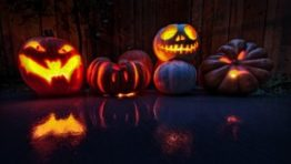 Halloween Wallpaper Hd 3d1 300×169