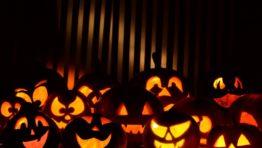 Halloween Wallpaper Pumpkins1 800×600