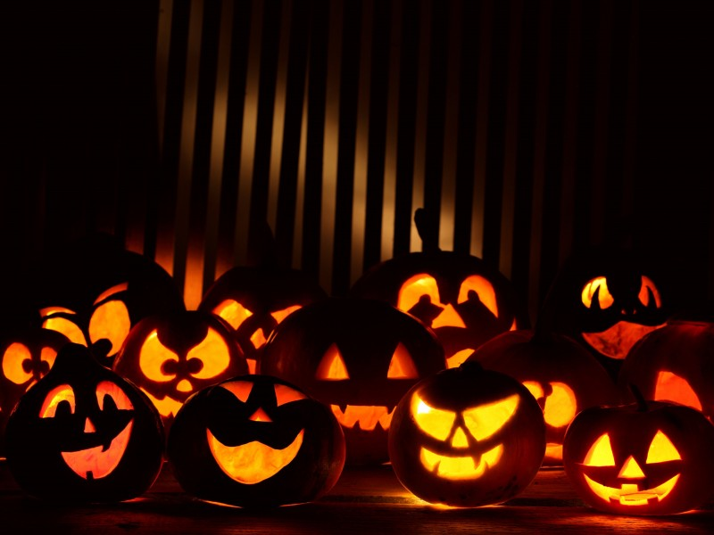 Halloween Wallpaper Pumpkins1 800×600