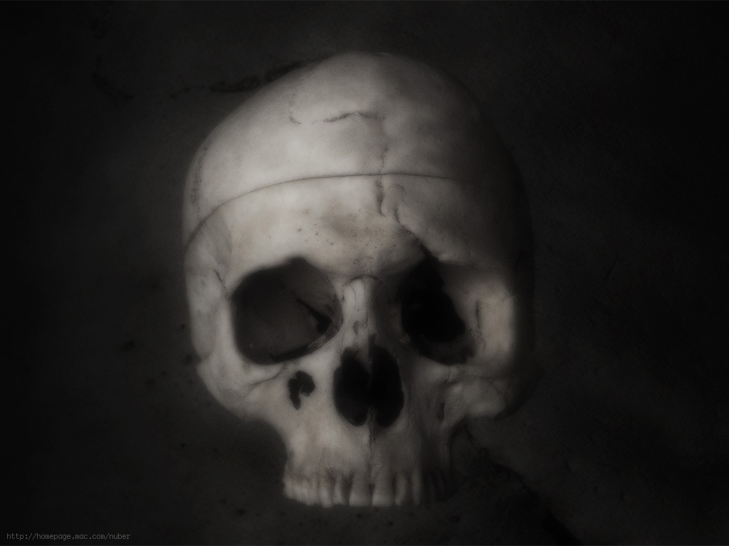 Halloween Wallpaper Skulls1