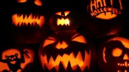 Halloween Wallpapers 2560×14401 800×600