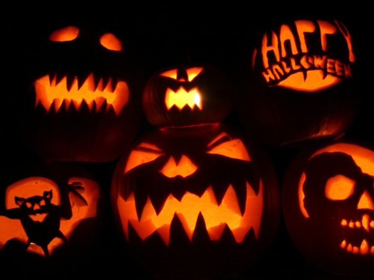 Halloween Wallpapers 2560×14401 800×600 768×576