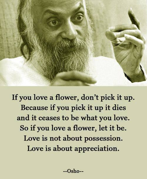 Osho Flower Quotes