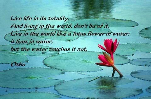 Osho Quotes On Life 03