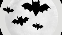 Transparent Halloween Clip Art3 300×286